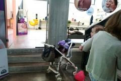 breastfeeding-armchair-mimmama-leura-mammacheblog